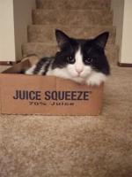 Ex-squeeze Me