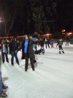 Mary Lou on Ice