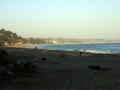 New Brighton & Seacliff State Beaches